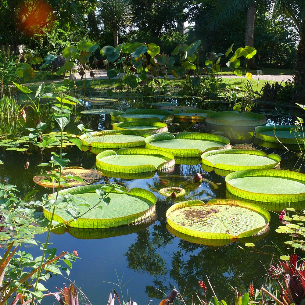 Mediterrane Gärten 7