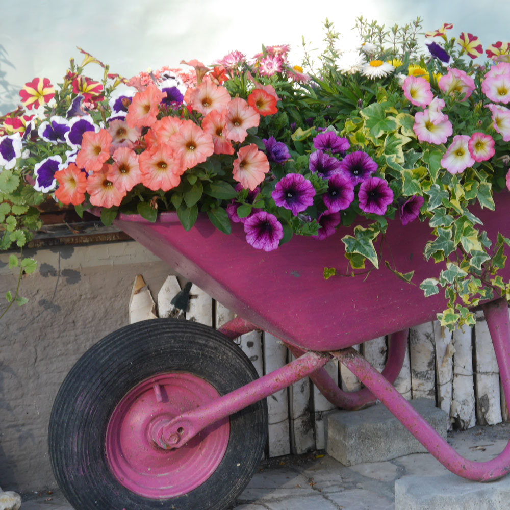 Upcycling – 10 originelle Blumenkübel 4