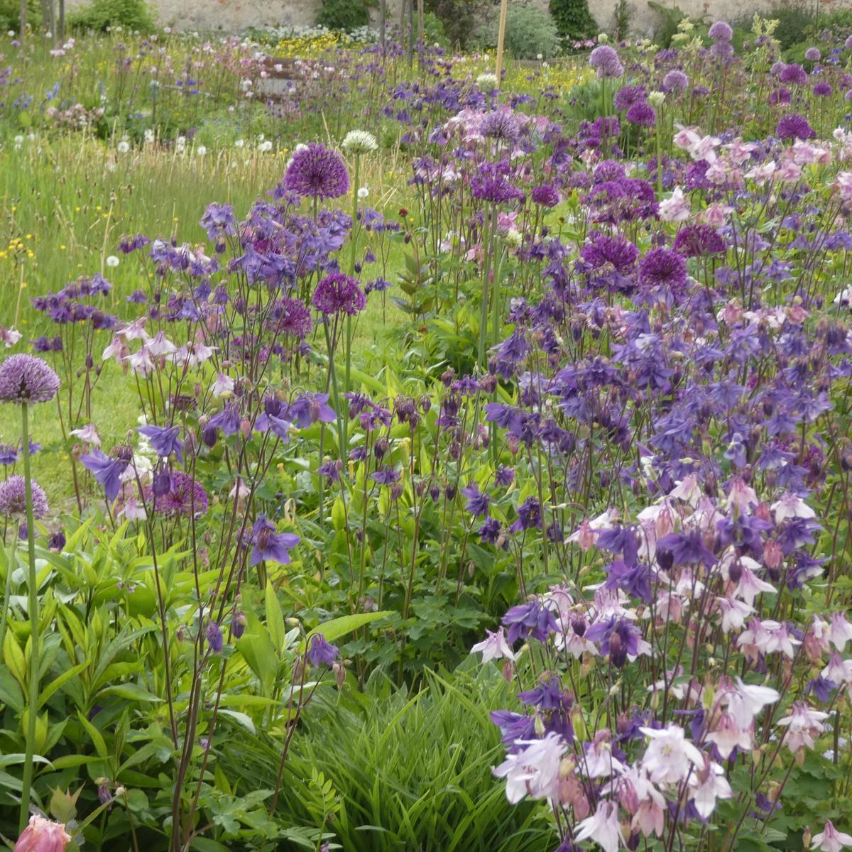 Wilde Gärten
