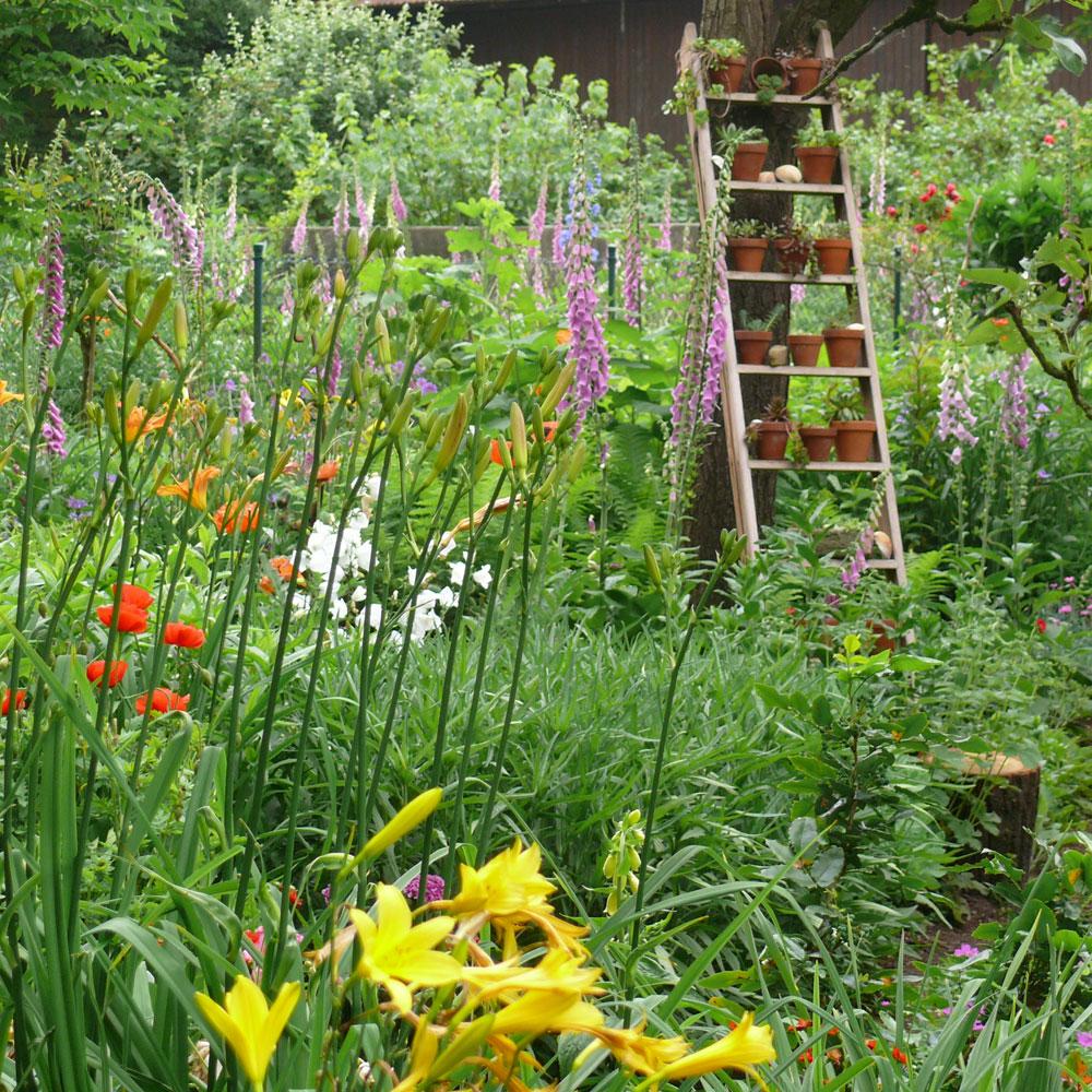 Wilde Gärten - naturnah und pflegeleicht 9
