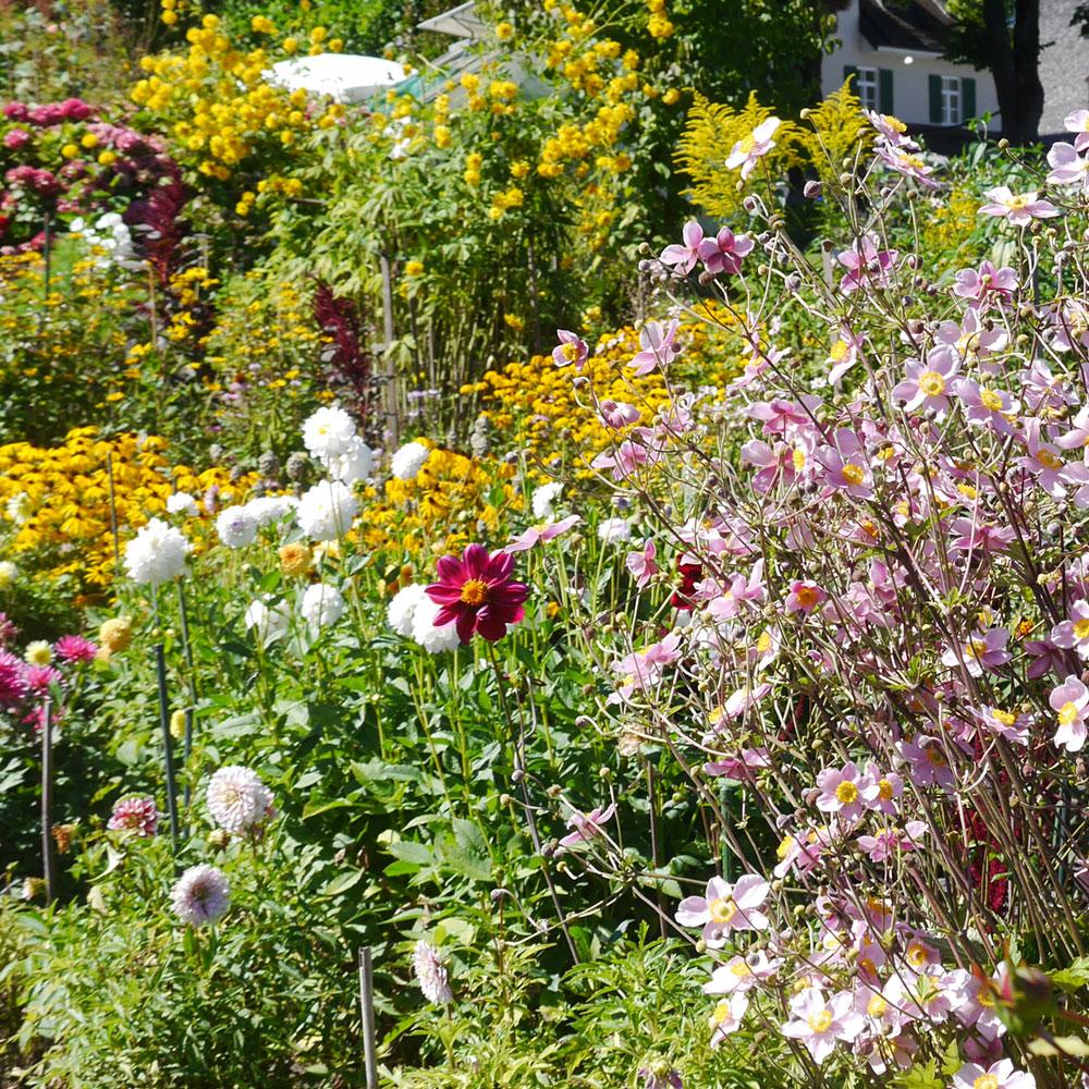 Landhausgarten - charmant und romantisch 1