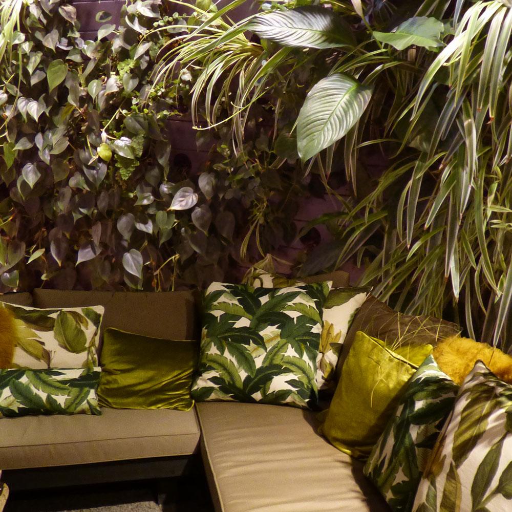 Grüner Wohnen: Urban Jungle 1