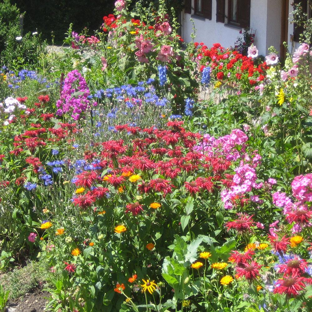 Bauerngarten Beet
