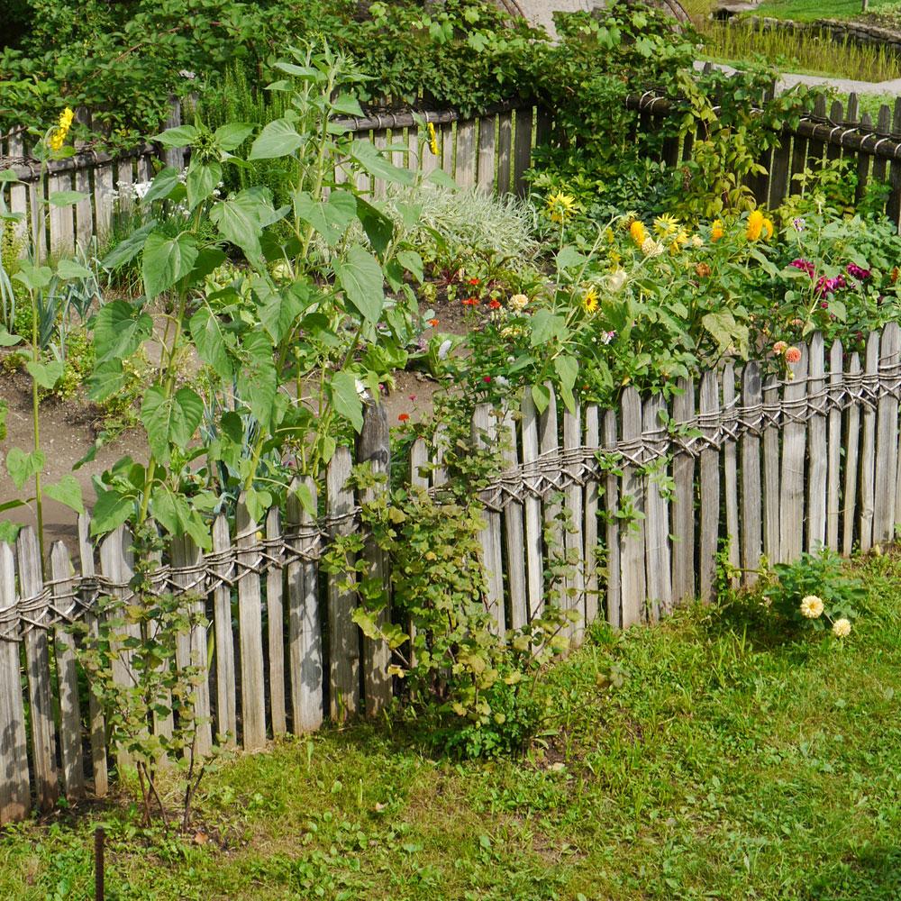 Bauerngarten anlegen