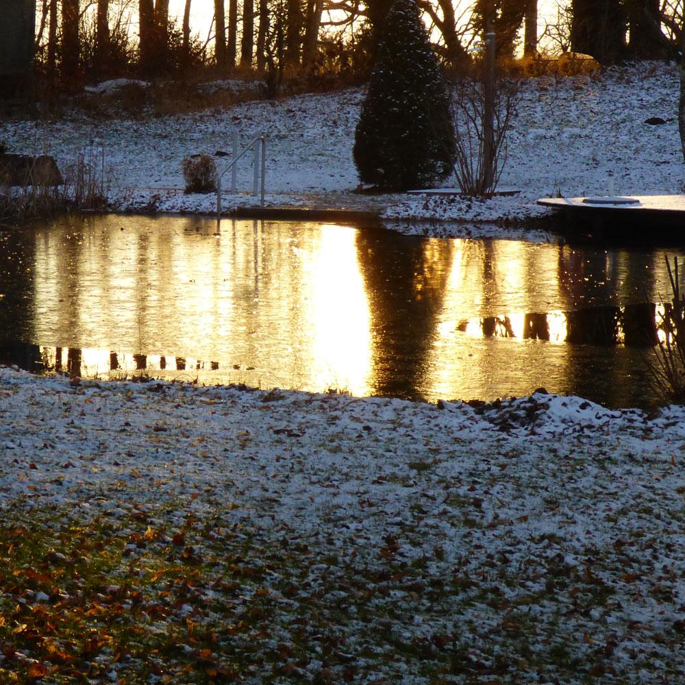 Naturteiche im Winter