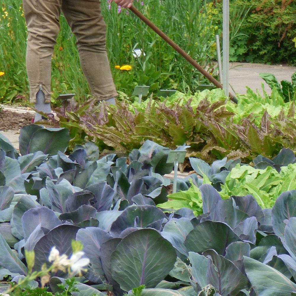 Der neue Trend für Wohnung und Garten: Friluftsliv 4