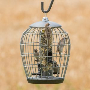 Vogelfuttersysteme 344