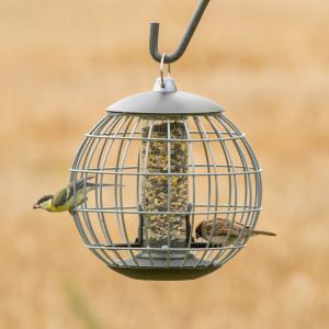 Vogelfuttersysteme 342