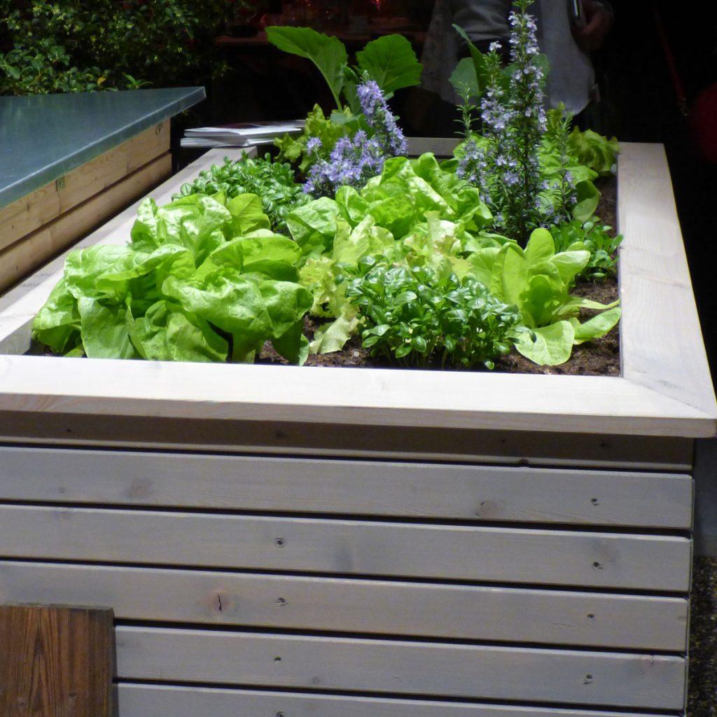 Moderne Hochbeete: So wird das Gemüsebeet zum Highlight im Garten 5