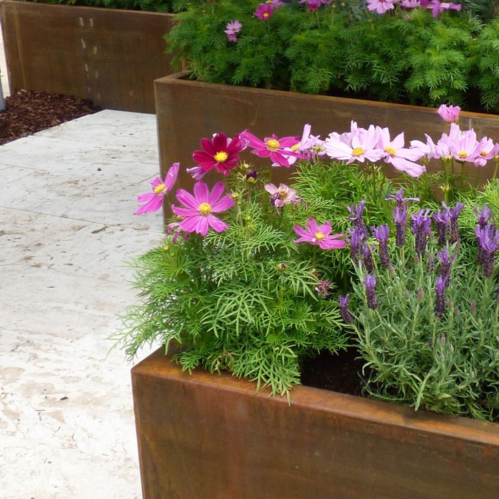 Moderne Hochbeete: So wird das Gemüsebeet zum Highlight im Garten 4