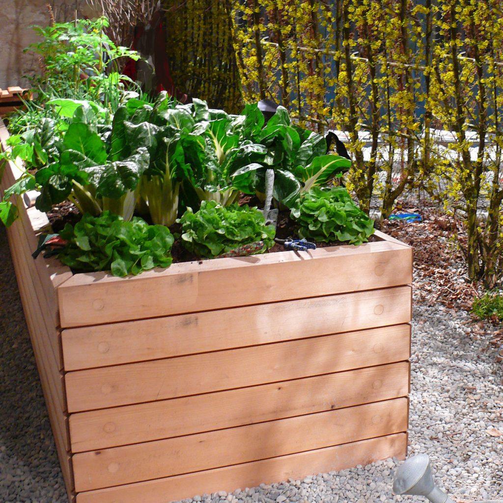 Moderne Hochbeete: So wird das Gemüsebeet zum Highlight im Garten 2