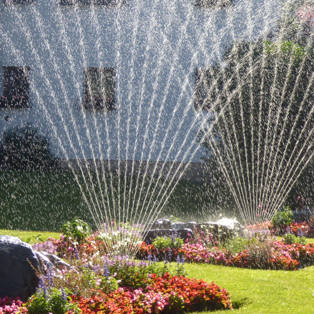 Wasser sparen im Garten 1