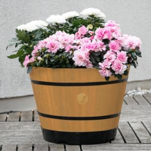 Romantik pur: einen verwunschenen Garten anlegen 15