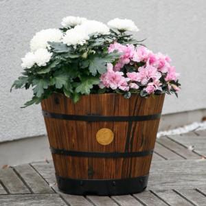 Romantik pur: einen verwunschenen Garten anlegen 6