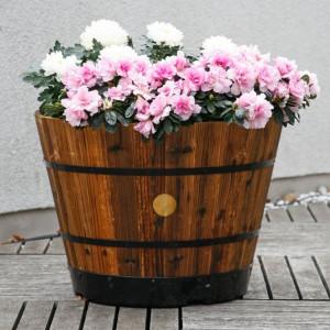 Romantik pur: einen verwunschenen Garten anlegen 3