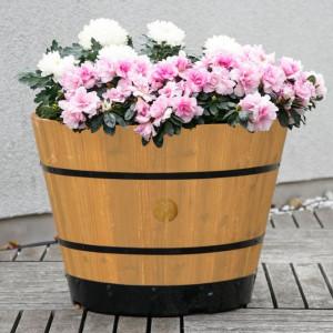 Romantik pur: einen verwunschenen Garten anlegen 4