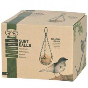 Vögel füttern aber richtig 3