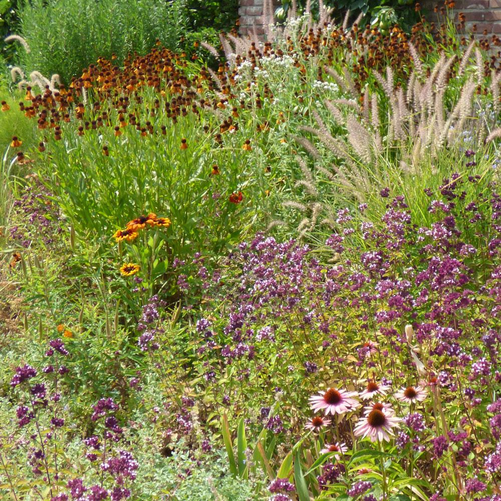 Gartengestaltung modern und pflegeleicht und naturnah 16