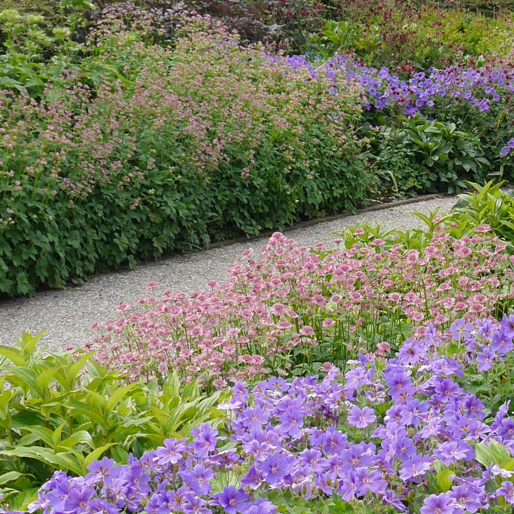 Gartengestaltung modern und pflegeleicht und naturnah