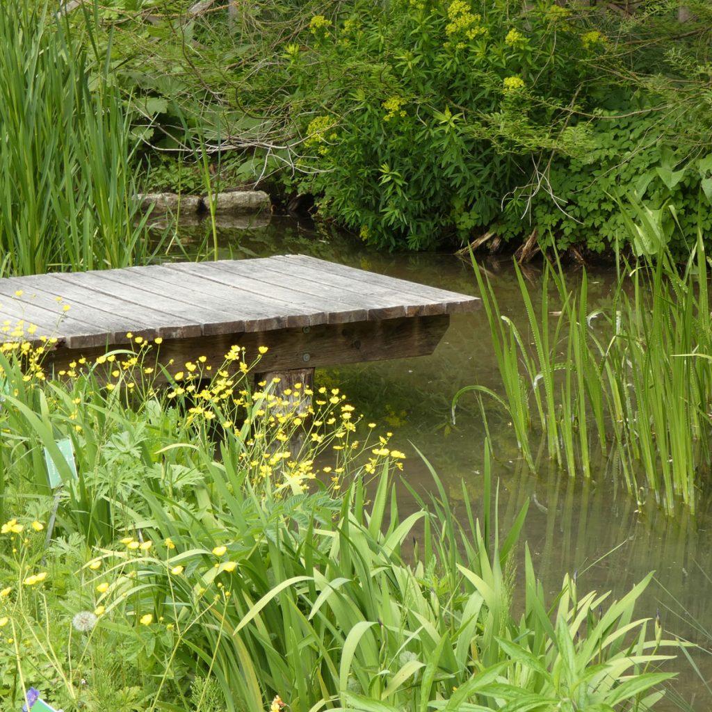 Romantik pur: einen verwunschenen Garten anlegen 13