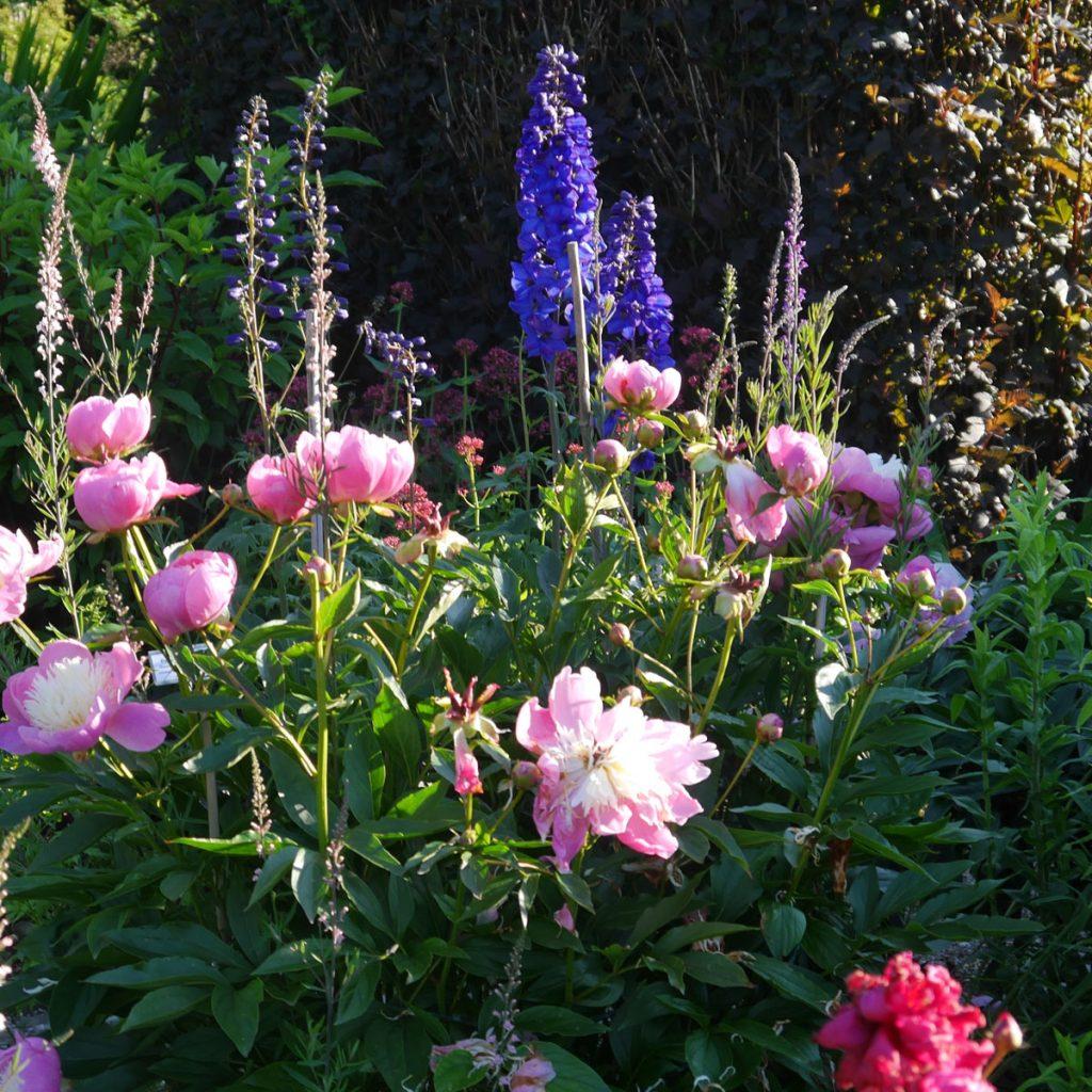 Romantik pur: einen verwunschenen Garten anlegen 18