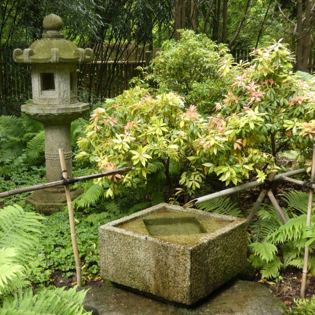 japanisches Bambusrohr und Pagode