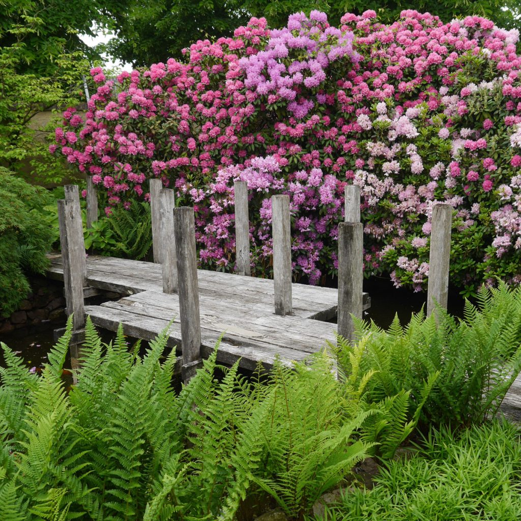 Japanische Gärten 3