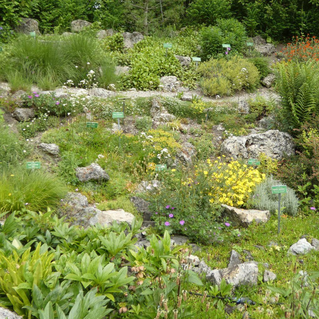 Faszinierende Gartengestaltung mit Steinen 2