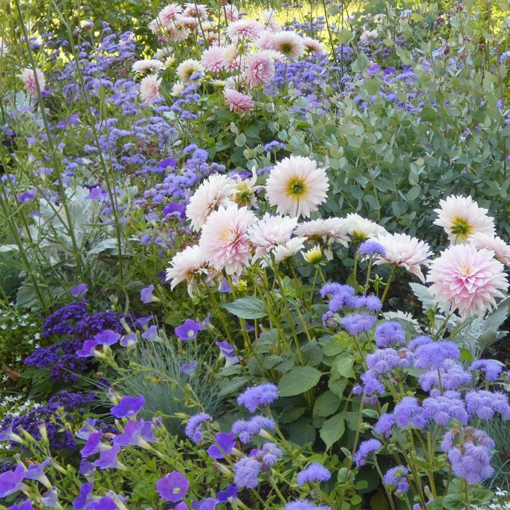 Wirkung von Farben im Garten